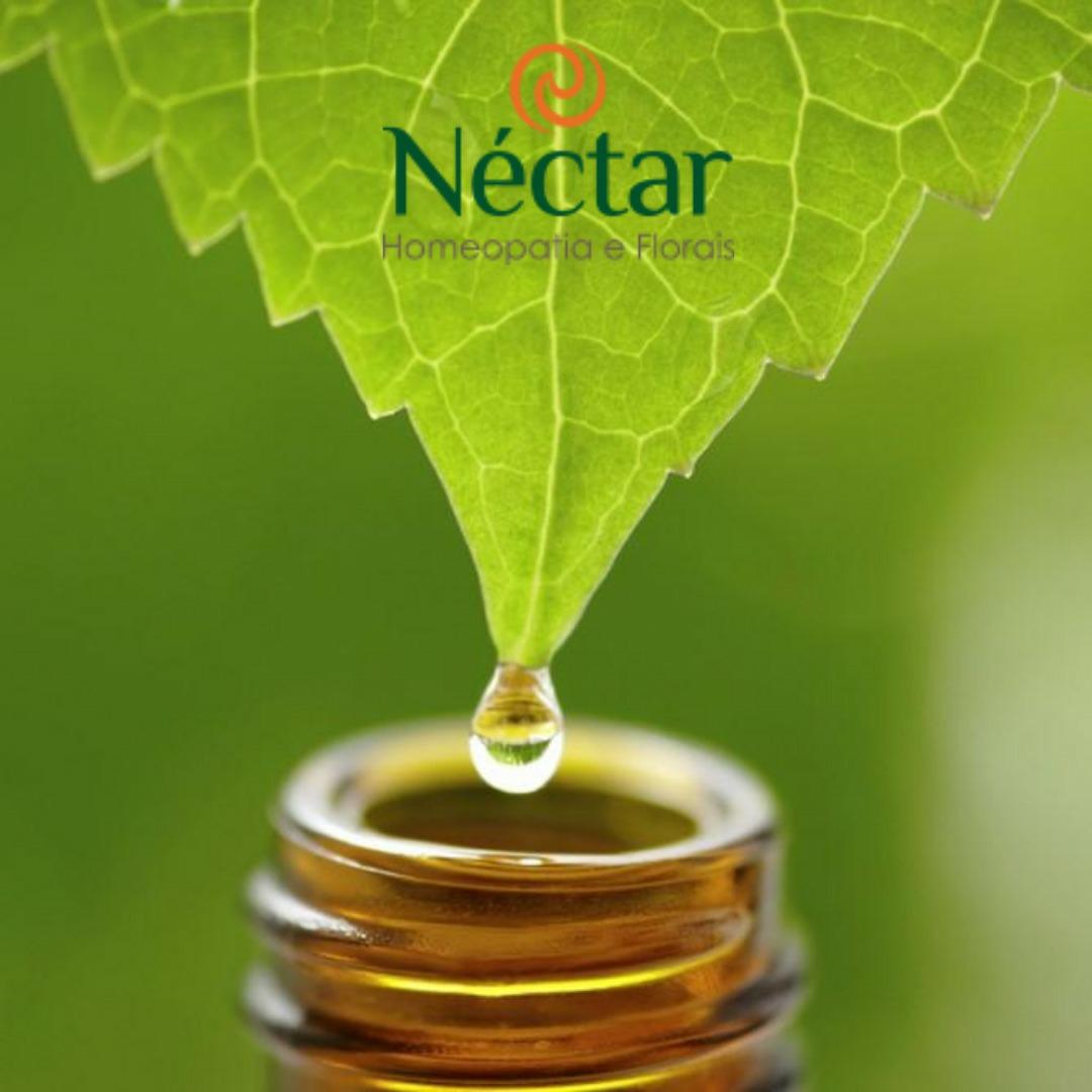 A homeopatia é um sistema de medicina que atua sobre a força vital .